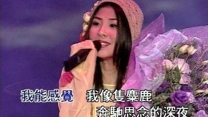 Valen Hsu - Mei Meng Cheng Zhen