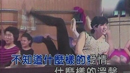 Kris Fei - She Mo Yang De Ai