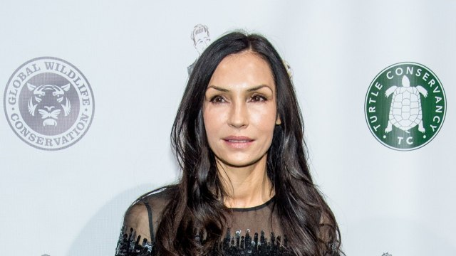 Famke Janssen Done Playing Jean Grey?