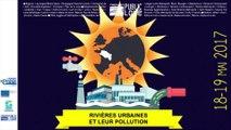 Les rivières urbaines et leur pollution», présentation d'un ouvrage de référence