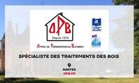 O.P.B Traitement bois, combles, toitures à Nantes - Problèmes de termites (44)