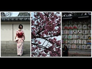[Travel] Japan Trip Second Week 日本之旅第二星期