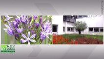 Aménagement d'espace vert, entretien de jardin - Paysagiste à Garcelles Secqueville