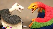 Videos de Dinosaurios para niñs Din