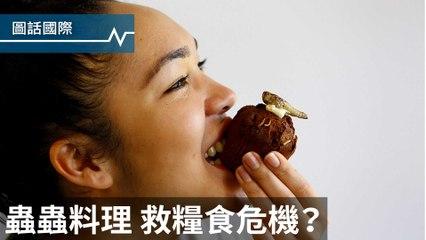 幼蟲巧克力蛋糕、炸蟋蟀沙拉......蟲蟲料理,是糧食危機的救星?