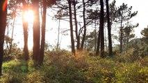 米田麗香の美しい風景画像5