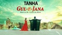 Pashto New HD Film Gul-E-Jana - Tanha Tanha Be Lata Yem Tanha