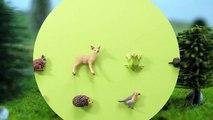 Et animaux en voie de disparition pour enfants apprentissage des noms partie des sons espèces 5