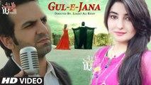Gul Panra & Shaan Khan New Pashto HD Song 2017 Tanha Tanha Be Lata Film Gul E Jana | Latest Pashto Songs