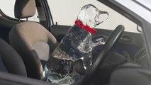 Que faire si vous découvrez un chien enfermé dans une voiture au soleil