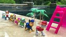 Un et un à un un à ont Nouveau entaille fête patrouille patte piscine chiot chiots traqueur avec Jr.s hamptons