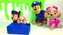 Colores núcleos de Aprender patrulla pata sorpresa juguete Aprender patrulla canina portugués inglés gel