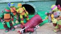 Ninja Turtles Mutations Michelangelo Steals Rocksteady Arms and Fights Raphael Metal Head