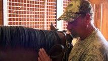 Débutant vétérinaire aime soins pour les chevaux grande animaux