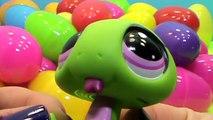 Des œufs animal de compagnie Boutique jouets déballage lps Littlest œufs surprise surprise jouets आश्चर्य अंडे खि