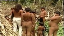 Uncontacted Amazon Tribes: Isolated Tribes Of The Amazon Rainforest Brazil 2015
