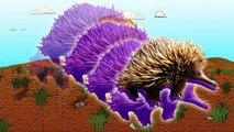 Animal Videos for Kids! Animal Names for Children! Australian Animals! Learn Animal Names! , Cartoons movies animated 2017 & 2018