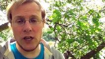 0014 'Love-Storm' - Aggressive Friedlichkeit - Lösungen für Frieden #1 - I-PROTEST BLOG (Hagen Grell)