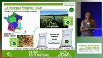 Intervention 4 - Sandra Malaval - CBN Pyrénées & Midi-Pyrénées
