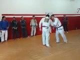 Graduação para Faixa Roxa de Jiu-Jitsu - 2015
