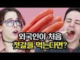 젓갈을 처음 먹어본 외국인 반응 [코리안브로스] Youtubers Try Korean Ferment Sea Food for the first time