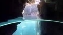 Plonger dans ces eaux limpides : le rêve