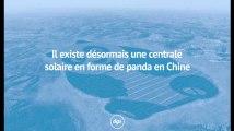 Il existe désormais une centrale solaire en forme de panda en Chine