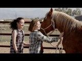 Le Ranch du Bonheur (2013) film complet en français