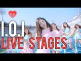 I.O.I | Knock Knock Knock _ Dream Girls Live stage Reactions [4LadsReact]