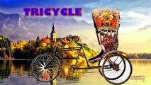 Homme chauve-souris bicyclette la famille doigt Apprendre des noms rimes rue super-héros Véhicules Animation 3D |