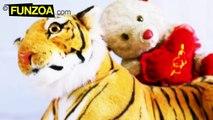 Mimi Teddy Ki Funny Shayari_ Episode 01 - Lamba Chauda Sher _ Funzoa Mimi Teddy Poetry For Friends