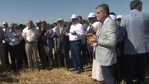 Bakan Çelik Konya'da Hasat Bayramına Katıldı