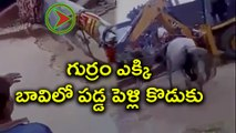 Horse carrying groom falls into well later rescued : Video | Oneindia Telugu
