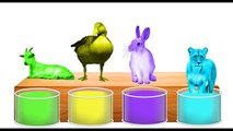 Learn Colors Farm Zoo Wild Safari Animals Bathing Kids Old MacDonald had a Nursery Rhymes Fun Place