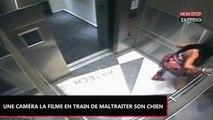 Miami : Une femme frappe violemment son chien dans l'ascenseur, les images chocs (Vidéo)