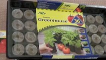 Starting Tomatoes Indoors - A Complete Guide - Sowing Seeds to Transplanting