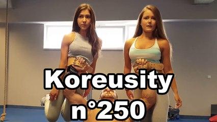 Koreusity n°250