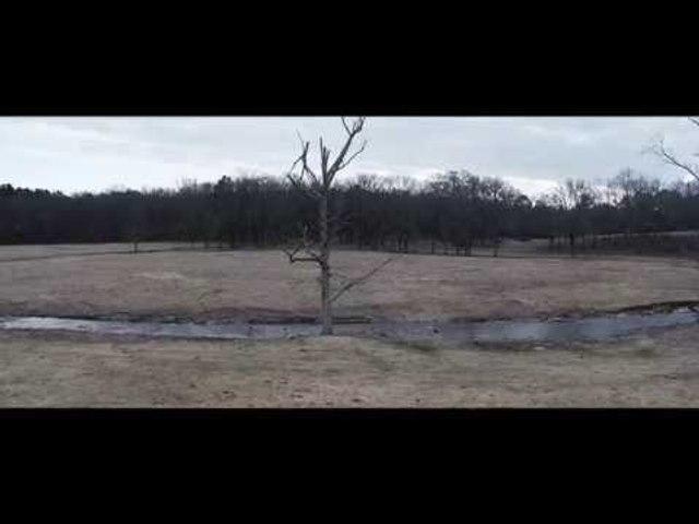 Cap Bailey - Dip-N-Brews (Official Video)