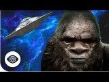 Is Bigfoot An Alien?