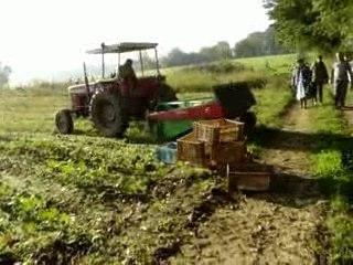 Visite à la ferme de Ludovic