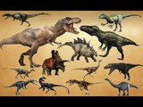Jurassic Hunters Dinosaurs | Learn Dinosaurs Names and Sounds | Fun Toddler