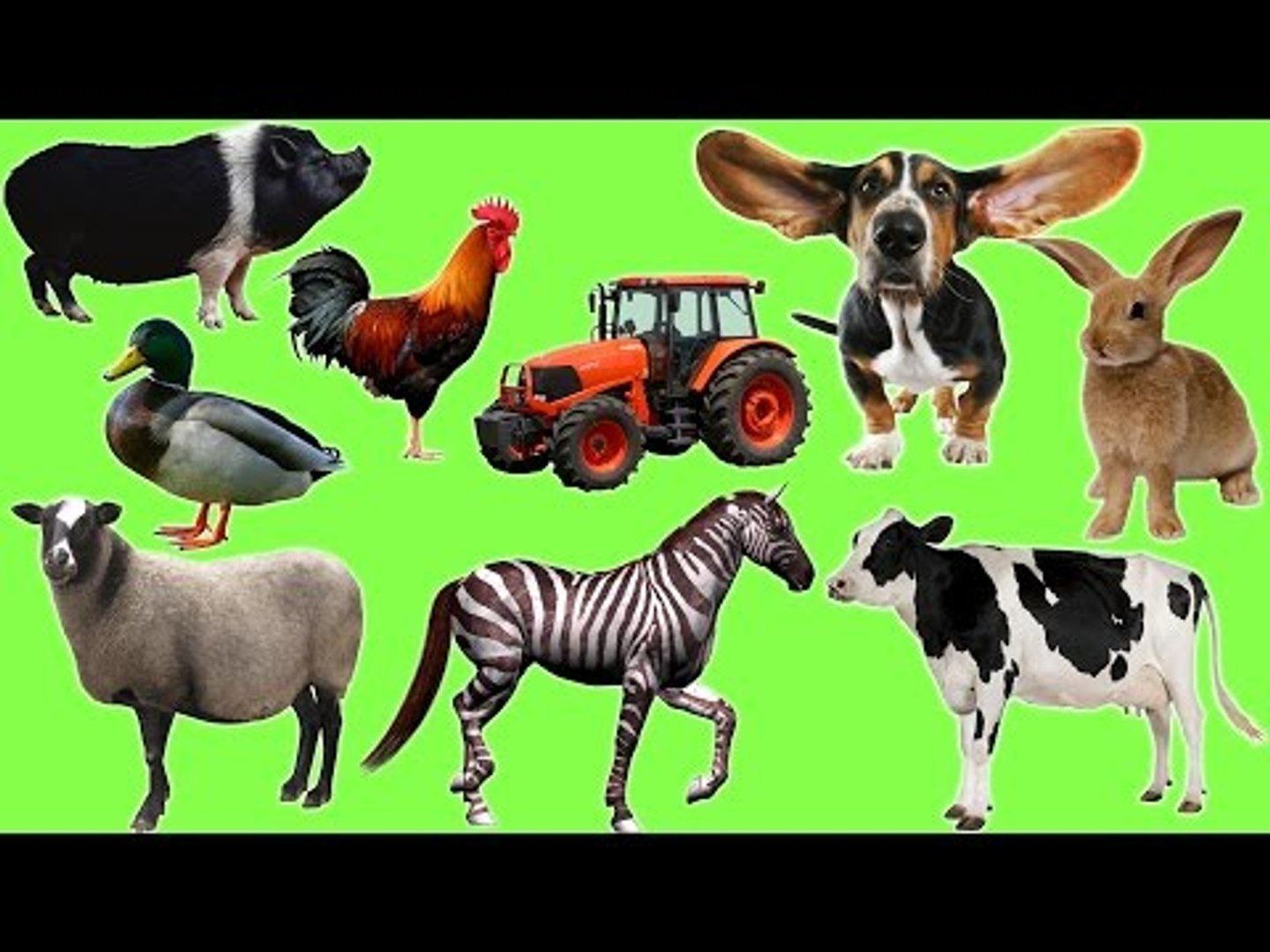 Animals On The Farm | Farm Animals Name and Sound | Fun Toddler Learn Animal
