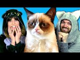 50 VIRAL CAT VIDEOS IN 4 MINUTES (Ft. Grumpy Cat & Grace Helbig!)