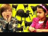 Kids React to Cows & Cows & Cows