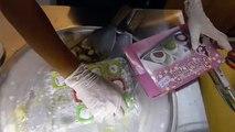 ICE CREAM ROLLS Street Food - MATCHA MOCHI Wafer w Peanut ex Matcha Green Tea Choco Biscuit Topping