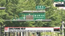 Large areas of  Korea issued with heat wave advisories or warnings