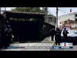 Perros Pitbull matan a una niña en Coyoacán | Noticias con Ciro Gómez Leyva