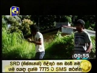 Hara Kotiya 20/07/2017 - 142