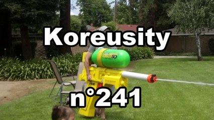 Koreusity n°241
