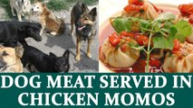 Dog meat in momos leads to shutting of eateries in Delhi's cantt. area | Oneindia News